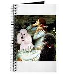 TILE-Oph-Pood-PR2.PNG Journal
