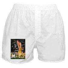 MIDEVE-Pug18-fawnsmile.png Boxer Shorts