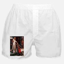 5x7-Accolade-PugPair.png Boxer Shorts