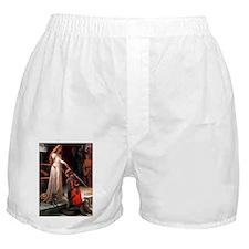 ACCOLADE-Pug-Blk14.png Boxer Shorts