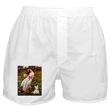 Windflowers / Scottie (w) Boxer Shorts