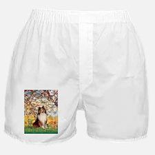 ORN-SPRING-Sheltie1.png Boxer Shorts