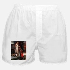 8x10-Accolade-Sheltie-TRI.png Boxer Shorts