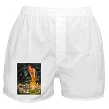 5.5x7.5-MidEve-TibSpan4.png Boxer Shorts
