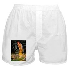 5.5x7.5-MidEve2-York7.png Boxer Shorts