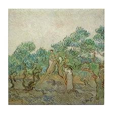 Vincent Van Gogh - The Olive Orchard Tile Coaster