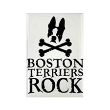 Boston Terriers Rock Rectangle Magnet (100 Pack)