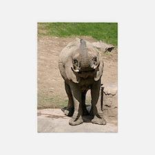 Elephant 001 5'x7'Area Rug