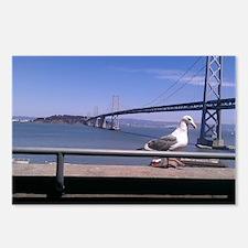 Bay Bridge & Friend Postcards (Package of 8)