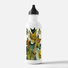 Kalamazoo Stray Cats Water Bottle