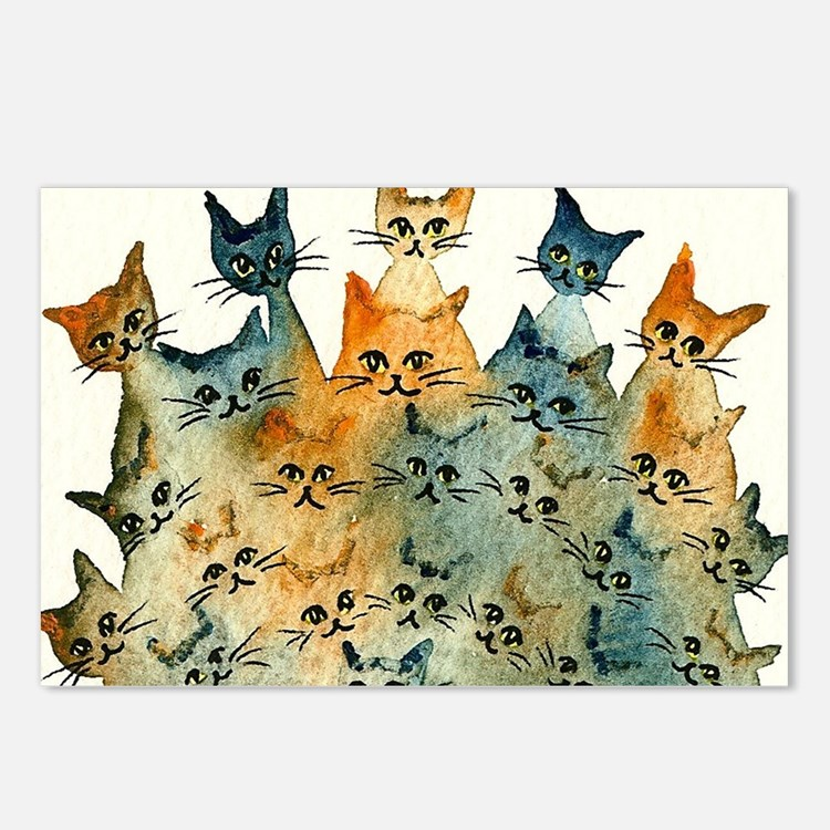 Charlottesville Stray Cat Postcards (Package of 8)