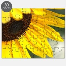Personality of The Sunflower Puzzle