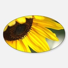 Personality of The Sunflower Decal