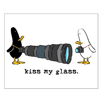 WTD: Kiss My Glass Small Poster