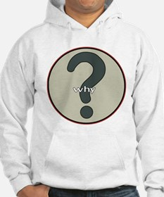 The question is WHY? Hoodie