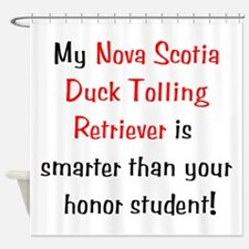 My Nova Scotia Duck Tolling Retriever is smarter..