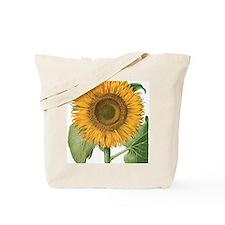 Vintage Sunflower Basilius Besler Tote Bag