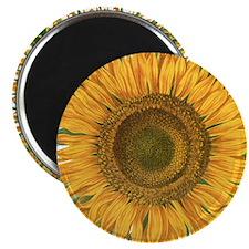 Vintage Sunflower Basilius Besler Magnet