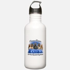 I Have A Dream No BSL Water Bottle