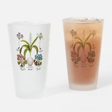 Vintage Flowers by Basilius Besler Drinking Glass