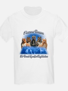 I Have A Dream No BSL T-Shirt