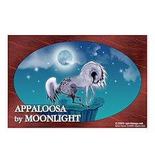 Appaloosa Horse by Moonlight Postcards (Pkg of 8)