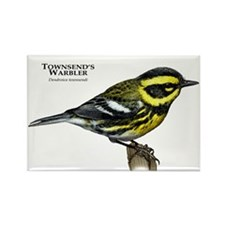 Townsend's Warbler Rectangle Magnet