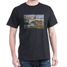 Rocks and Tide Pool T-Shirt