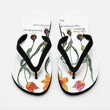 Vintage Tulips by Basilius Besler Flip Flops