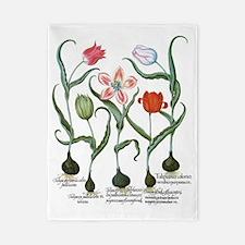 Vintage Tulips by Basilius Besler Twin Duvet