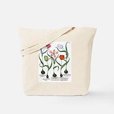 Vintage Tulips by Basilius Besler Tote Bag