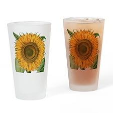 Vintage Sunflower Basilius Besler Drinking Glass