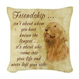 Friendship Woven Pillows