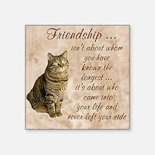 "Friendship - Cat Square Sticker 3"" x 3"""