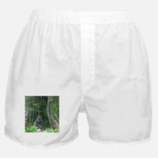 Thinking Gorilla Boxer Shorts