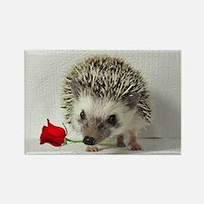 hedgehog with rose Rectangle Magnet