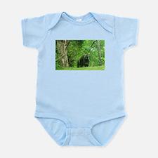 Bring It On Gorilla Body Suit
