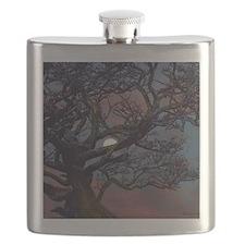 Moonlight Madness Flask