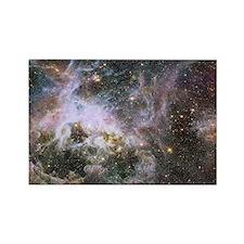 Cosmic Creepy-Crawly Tarantula Nebula Magnets