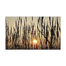 Tall Grasses with Backlit Set Rectangle Car Magnet