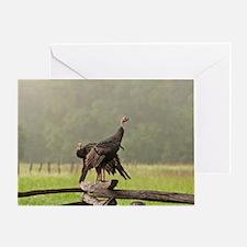 Wild Turkeys-Cades Cove Greeting Card