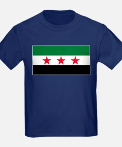 Syrian National Coalition Flag T