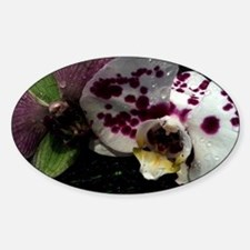 Orchid Style Decal