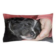 IcelandicSheepdog038 Pillow Case