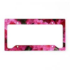 Blaze of Pink License Plate Holder