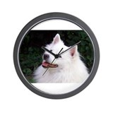 American eskimo Wall Clocks