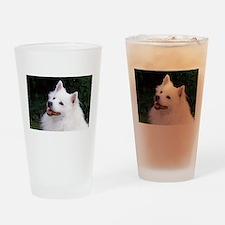 american eskimo Drinking Glass