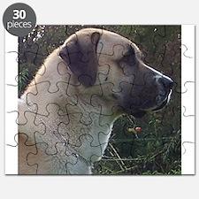 anatoilian shepherd Puzzle