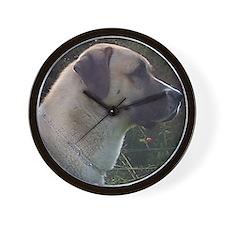 anatoilian shepherd Wall Clock