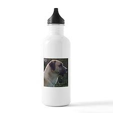 anatoilian shepherd Water Bottle